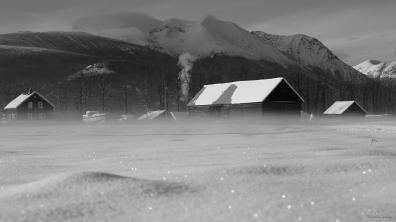 HugFarm_Winter16'